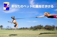 あなたのペットに翼をさずける!?「Pet Bull(ペットブル)」4月1日(金)新発売!